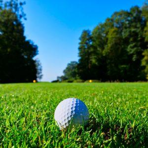 lone golf ball